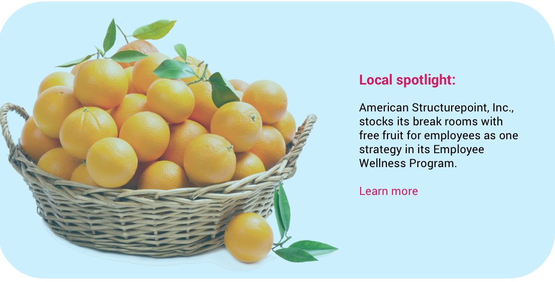 Basket of fruit - American Structurepoint feature